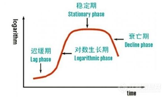 微生物(细胞)生长阶段时期监测1.jpg
