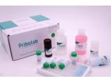 霉菌毒素检测试剂盒