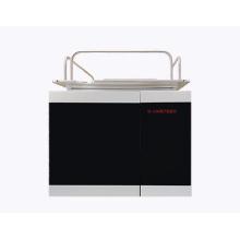 艾塔离子色谱仪GI-1100