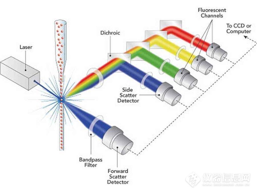 原理图2.jpg