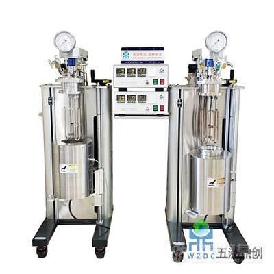 WZ-2000-固定头机械搅拌反应釜.jpg