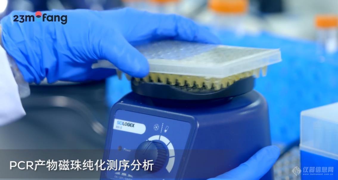 10-PCR产物磁珠纯化测序分析-SCILOGEX漩涡混匀仪.jpg