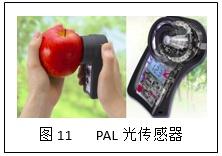 图11.png