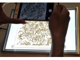 万深SC-H手机拍照款自动种子数粒仪