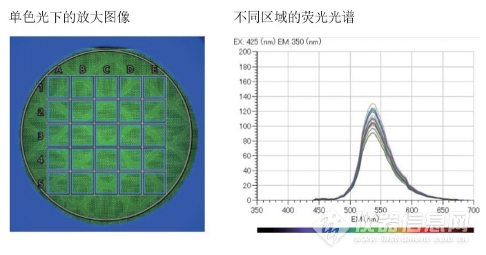 样品不同区域的荧光光谱.png