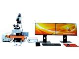 TissueFAXS PLUS 全景组织细胞定量分析系统