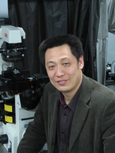"""国家纳米科学中心、研究员、博士生导师,研究组组长。 主要学术兴趣:纳米生物医学成像与表征、生命复杂流体与管理、生物力药理学。 2004年3月进入国家纳米科学中心,建立纳米生物医学成像与表征研究组。期间,在JACS、Adv. Mater、Angew. Chem. Int. Ed.,Small、APL、ACS Nano、Nanoscale, Nanoresearch, Trend. Phamarcol. Sci、Ultramicroscopy 等杂志上,共发表 SCI 收录论文 100 余篇,涉及纳米、微纳米、化学、应用物理、力学、材料、药理、生物学、临床医学、显微镜等多个学科领域。曾主持完成科技部重大研究计划项目课题、国家自然基金委重大研究计划面上项目以及中科院重大仪器研制项目。中国科学院科技创新交叉合作团队负责人。主持制定纳米检测国家标准2项(已颁布)。获得中国专利 3 项,申请 8 项。 现任国际临床血液流变学会执行委员会委员;中国微循环学会痰瘀专业委员会主任委员;世界中医联合会气血分会常务理事;中国科学院仪器研制专业委员会委员。 主要学术贡献: (1)方法学建立:集成并发展了以原子力显微镜、环境扫描电镜等纳米源头技术为主导的、具有相互协同、验证、补充的多信息、多层次联合成像、表征及微加工设备功能群,实现了活体生物界面微尺度成像与表征方法学上的突破。近期基于核磁成像技术,发展了人体间质流体及其高效联通路径的原位成像设备。 (2)理论体系完善:强调""""生命介观流体与医学功能生物界面"""",聚焦软物质介观自组织物理结构中""""微尺度构建-功能-力学耦合""""行为,研究介观生命流体操纵与管理。在此基础上,倡导生命医学模式(PEO-medicine)的发展,重视提升人的自愈能力和顺应衰老过程。 (3)转化医学应用:发展生物力药理学理论,突出力学因素的等效药理作用,以及药物通过改变生物力学事件从而发挥作用的机制,重视药物与生物力学因素的联合效应;实现黏附可控医学功能生物界面的仿生设计与制备,及Biomarker 形式的临床样品微尺度力学参数指标的建立,探索""""实验台/病床""""双向引导的转化医学模式具体实施于诊断与治疗。"""