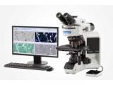奥林巴斯 金相显微镜 正置显微镜 BX53M