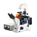 KEWLAB IFM-2 倒置熒光顯微鏡