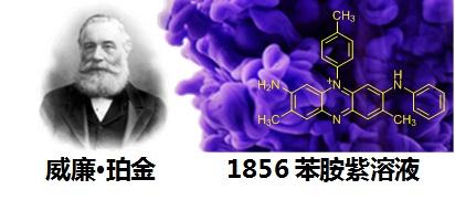 苯胺紫染料.png