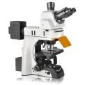 Nexcope科研级电动正置荧光显微镜