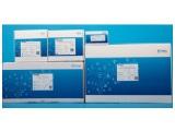 DNBSEQ-T7RS 高通量测序试剂套装