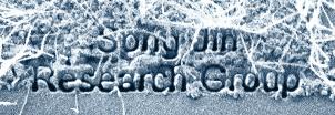 SongJin Research Group_FIB_Smaller2.jpg