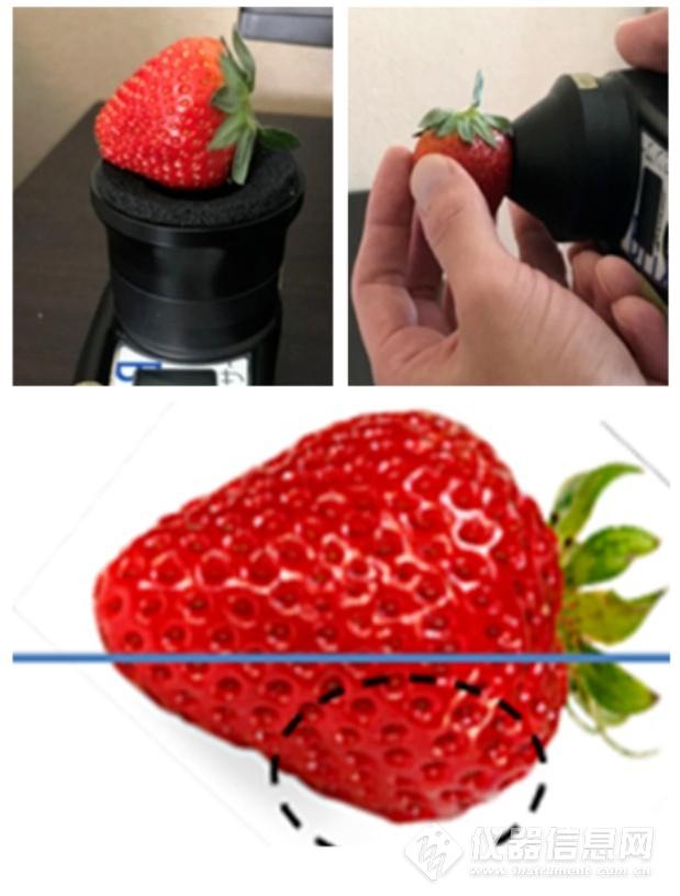 ATAGO(爱拓)草莓无损糖度计.png