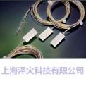 德国进口硅胶封装线绕铂电阻温度传感器