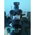 金相显微镜BX53M
