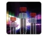 Ascentis RP-Amide 液相色谱保护柱柱芯