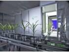 全自动高通量植物3D成像系统