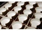 蓝菲光学Duraflect高漫反射率漫反射涂料
