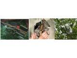 ENVIdata-DT 植物茎流叶温茎粗监测系统