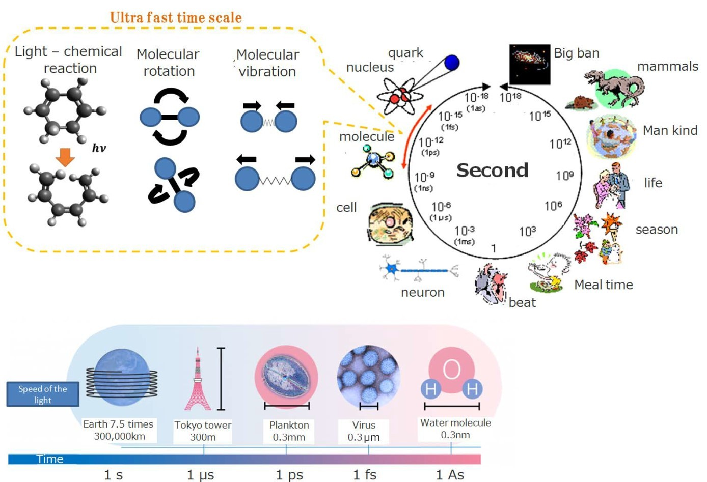 日本電子時間分辨TEM特色技術及應用